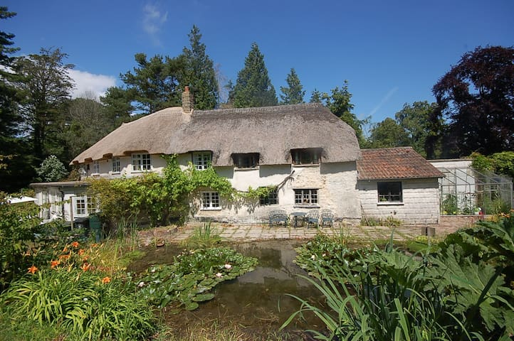 Character cottage in tranquil woodland grounds - Devon - Hus