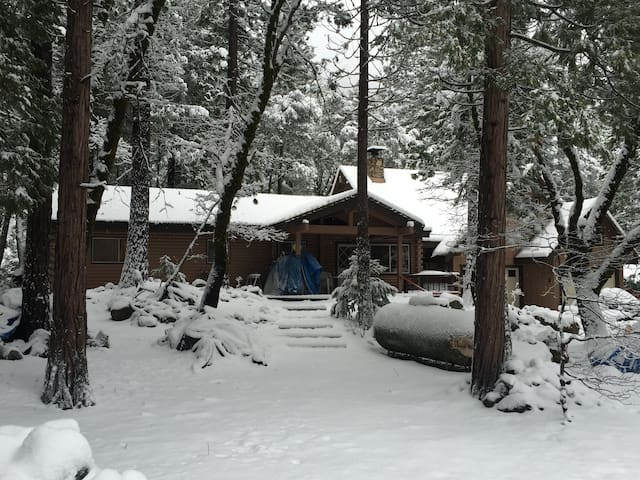 River Front Mountain Cabin w Views! - Sierra City