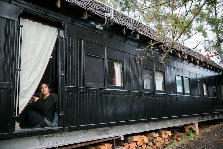 Steam: Train Carriage in the Otways - Forrest