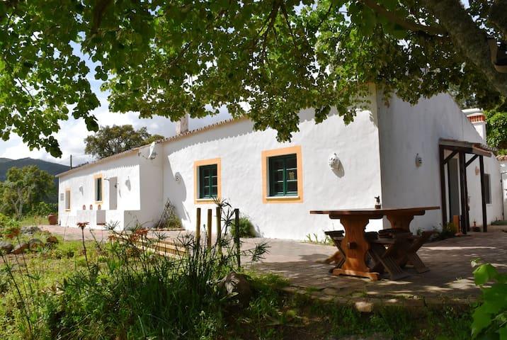 Peaceful Rustic Guesthouse, Monchique - Monchique