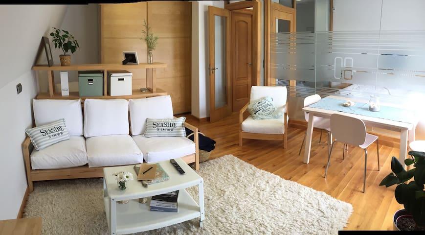 Cozy flat five minutes away from Santander! - Astillero - Wohnung