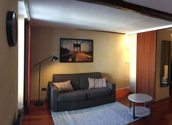 Saône & City - Neuville-sur-Saône - Lägenhet