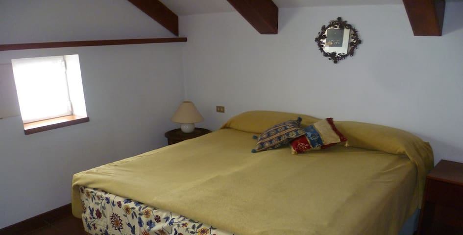 DOUBLE ROOM IN A BRIGHT ATTIC NEAR TURIN - Pino Torinese - Appartement