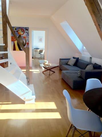 Warm appartement - Mulhouse - Departamento
