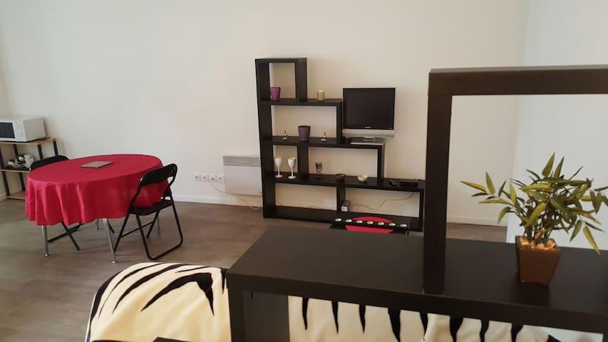 Appartement T1 - centre ville - Vienne