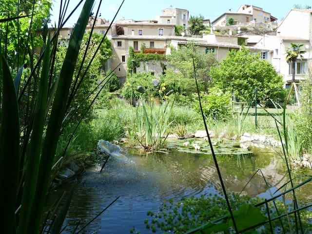 Gite nature les ANOURES en PROVENCE - Mollans-sur-Ouvèze