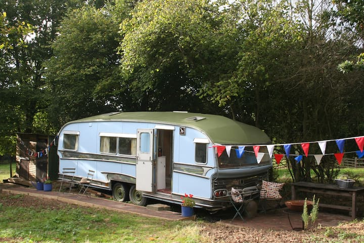 Gypsy Caravan Glamping in East Sussex - East Sussex - Дом на колесах