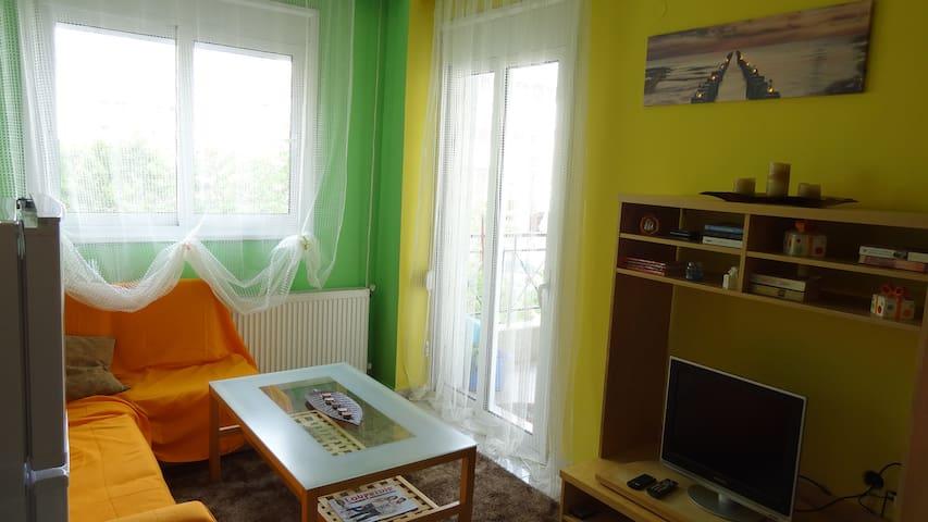 lovely little quiet apartment - Nikopoli