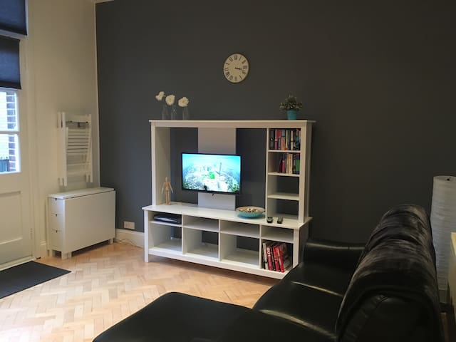 Lovely spacious quiet 1 bed apartment. - 布里斯托爾