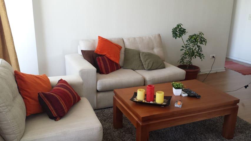 bonito y cómodo - Santiago - Apartamento