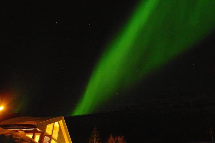 A modern cabin in a beautiful area. - Lenvik - Srub