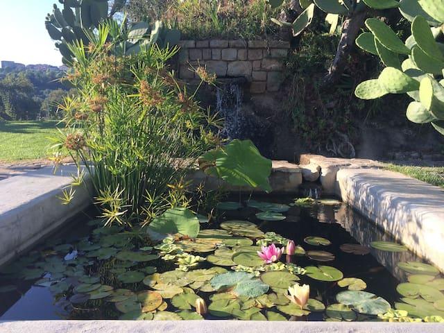 Esters'place, villa with pool - Angellara - Villa