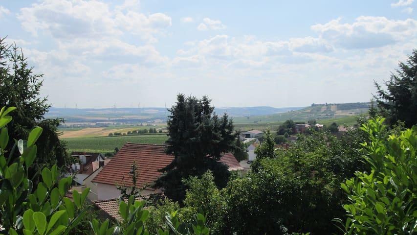 Traumhafte Wohnung mit Gartenterrasse & Fernblick - Vendersheim - Daire
