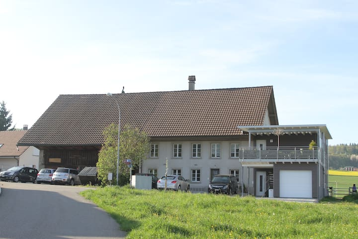 Pferderanch Raum Zofingen/Aarau - Safenwil