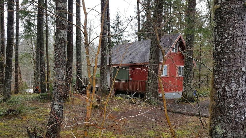 Charming Cabin by Mt Rainier - Ashford - Kulübe
