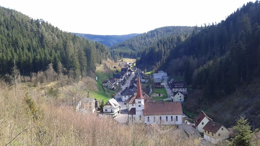 Cosy holiday home in the heart of the Black Forest - Triberg - 公寓