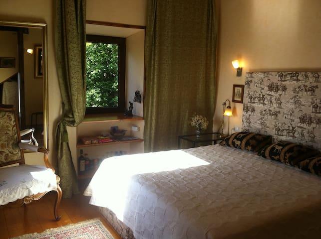 Lovely Apartment. Roma. Artena - Artena