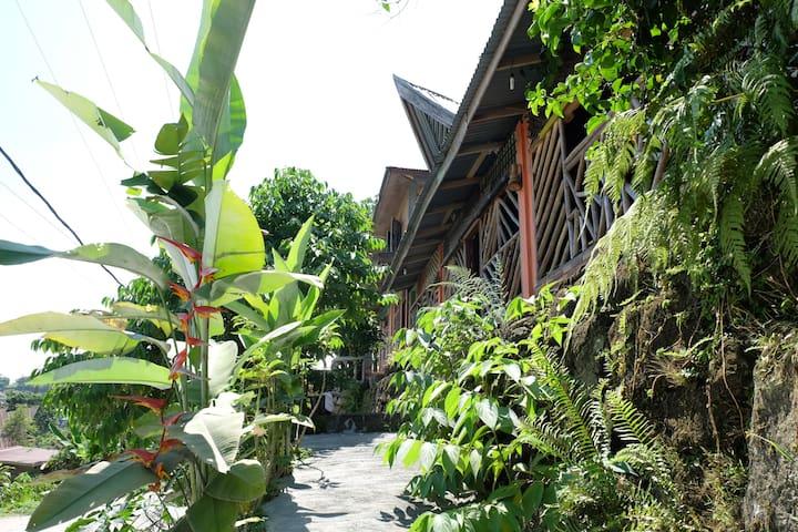Lake Toba Cats Garden - Simanindo