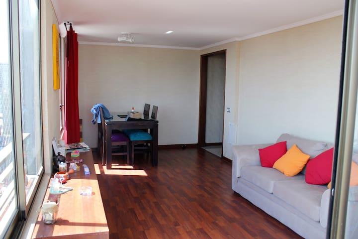Habitación privada con baño privado en Stgo Centro - Santiago - Apartemen