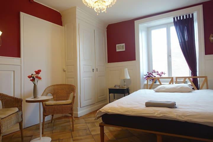 Room for 1-2 persons in Aarau - 阿勞(Aarau) - 家庭式旅館