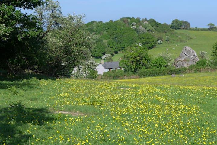 Beautiful Dartmoor Farmhouse - Moretonhampstead - Hus