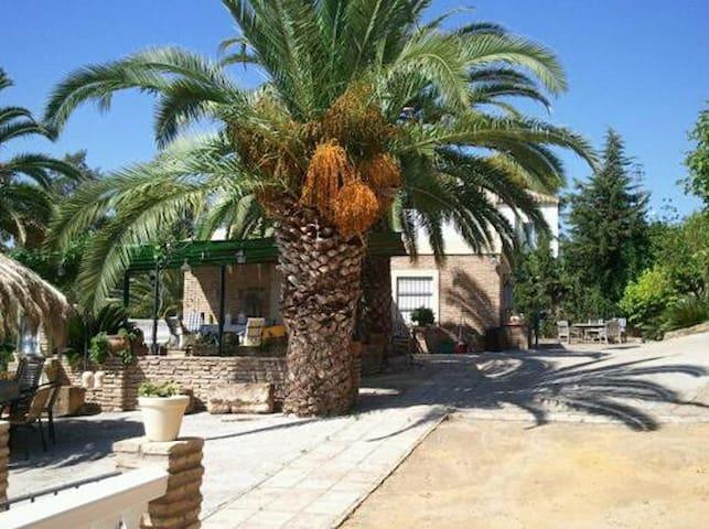 bungalow+swimming pool near Sevilla - Carmona - Bungalow