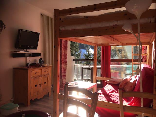 plein sud avec balcon tout confort - Villard-de-Lans - Appartement