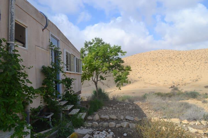 Goat farm apartment - gorgeous desert view! - Sde Boker - Huoneisto