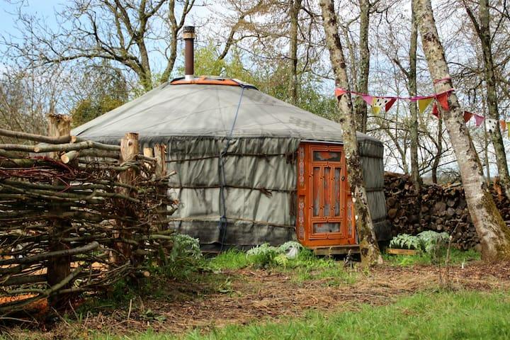 Yurt & traditional sauna in nature - Saint-Maurice-sur-Aveyron - 蒙古包
