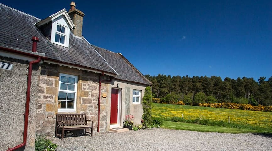Pine Cottage, set in idyllic Highlands countryside - Inverness - Huis