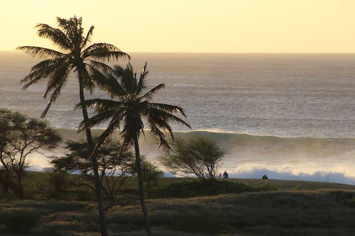 Peace of Paradise at Kepuhi Beach Resort #2224 - Maunaloa