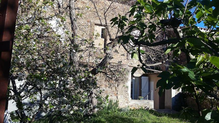 Maison de village entre Narbonne et Carcassonne - Conilhac-Corbières - Hus