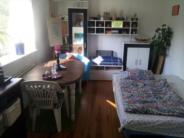 Zimmer im schönen grünen Itzehoe (am SEE!) - Itzehoe - Apartamento