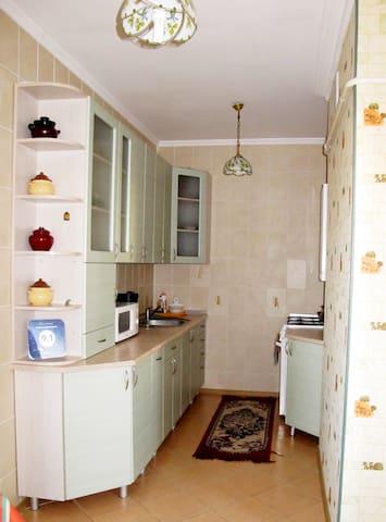 Велликолепная транзитная квартира - Brest
