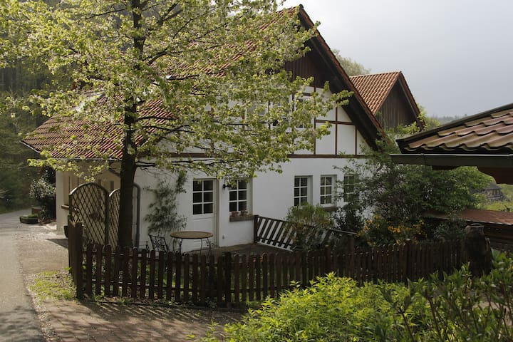 Home to the forest - Horn-Bad Meinberg - Rumah