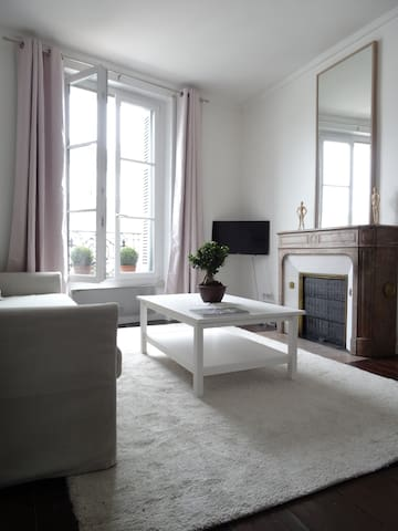 Cosy classical flat in front of the Royal Castle - Блуа - Квартира