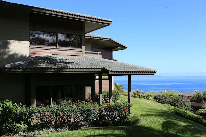 Contemporary Remodeled Ocean View Villa in Kapalua - Lahaina - Willa