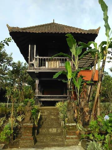 For rent Traditional Balinese House - Banjar - Lägenhet