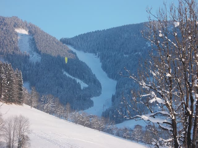 Sport and nature in Salzburg region - Weng - Appartement