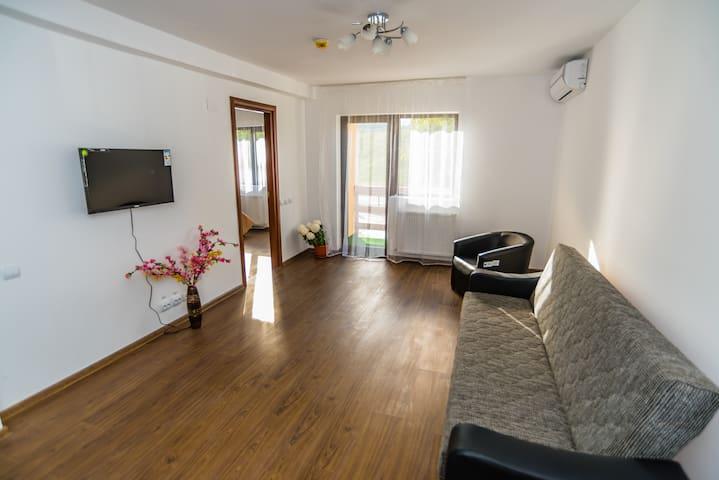 Apartment in La Familia Guest House - Pucioasa - Leilighet