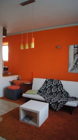 modern studio in calm village district of Prague - Praha - Leilighet