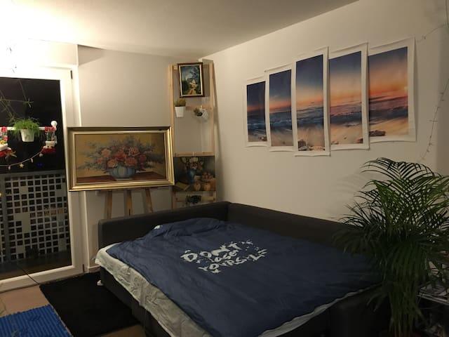 Beau studio à montagne verte - Strasbourg - Apartmen