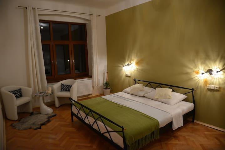 Luxury spa apartment in the city centre - Liberec - Lägenhet