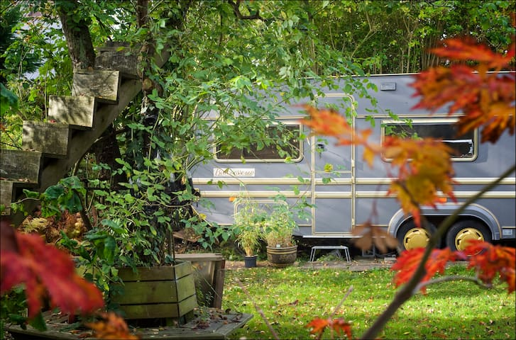 Huge Tinyhouse in the green, between sea and city - Oude Wetering - Kulübe