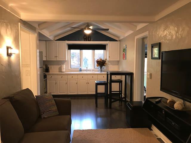 Bright, Private, Clean, Safe Apartment - Buffalo - Apartamento