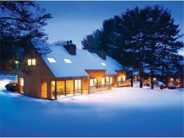 Christmas Mountain Village 1 Bedroom suite - Wisconsin Dells - Pis