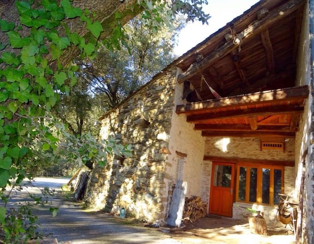 The Old Dairy, cool and cosy in the Haut Languedoc - Prémian - Hus
