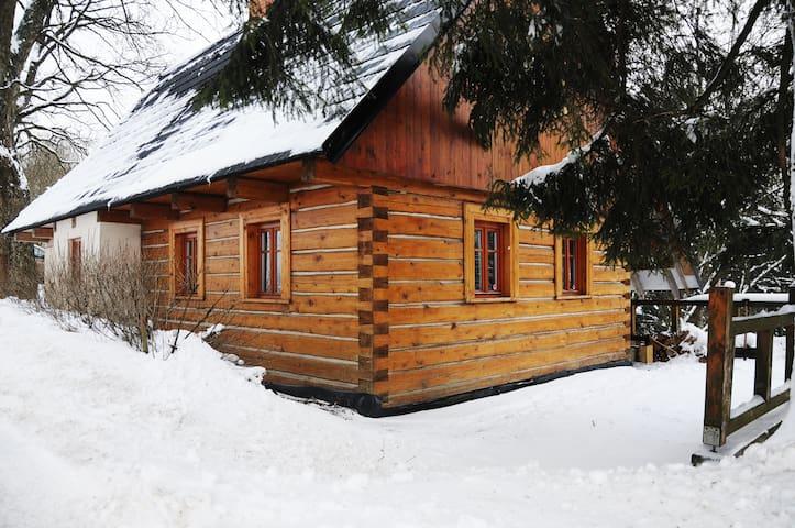 Classic wooden cabin with fireplace - Bartošovice v Orlických horách - Zomerhuis/Cottage