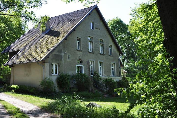 Sommerwohnsitz des Baron von Nolcken im Jagdhaus - Zislow - Maison