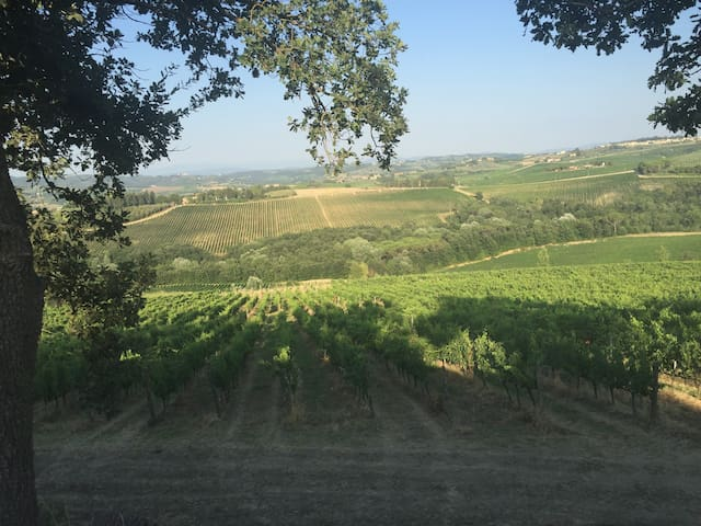 Country apartment in Tuscany hills - 特斯佩托利